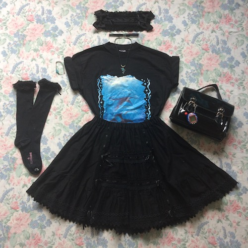 dolphin coord