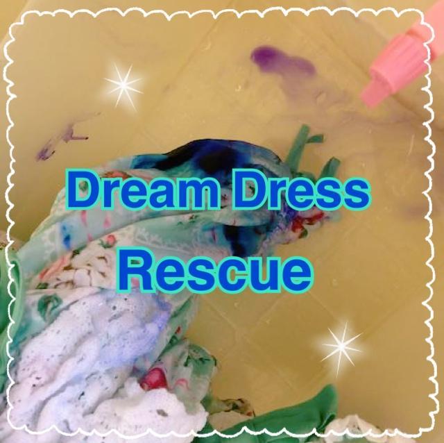 dream dress rescue thumbnail